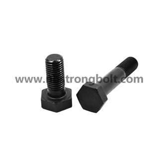 Hex Bolts with Black Gr. 12.9