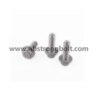 DIN6921 Cl. 8.8 Black Oxid Hex Flange Bolt/China flange bolt factory,China flange bolt manufacturer