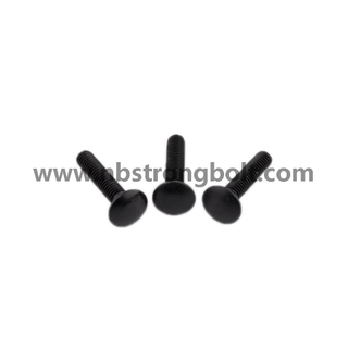 Carriage Bolt with Black/China carriage bolt factory,China carriage bolt manufacturer