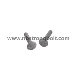 Carriage Bolt with HDG/China carriage bolt factory,China carriage bolt manufacturer,DIN603