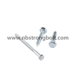 DIN571 Hexgon Wood Screw with Zp/China wood Screw factory,China wood Screw manufacturer