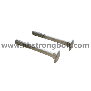 DIN603 4.8 H.T HDG M8 X 70 / China carriage bolt factory / China carriage bolt manufacturer